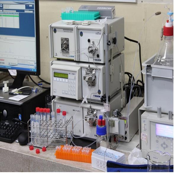 [035] 安定同位体比質量分析システム(高速液体クロマトグラフィー) 画像
