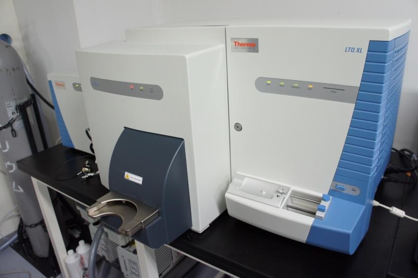 [018] 生体低分子測定装置 メタボローム解析用質量分析計 イメージング質量分析装置 〔リンク〕 画像