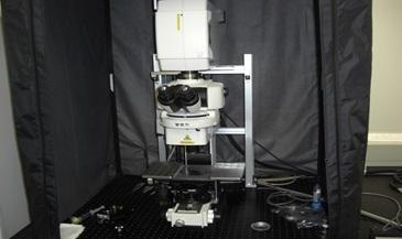 [199] 高速高精細多光子・共焦点イメージング対応レーザー顕微鏡システム 画像