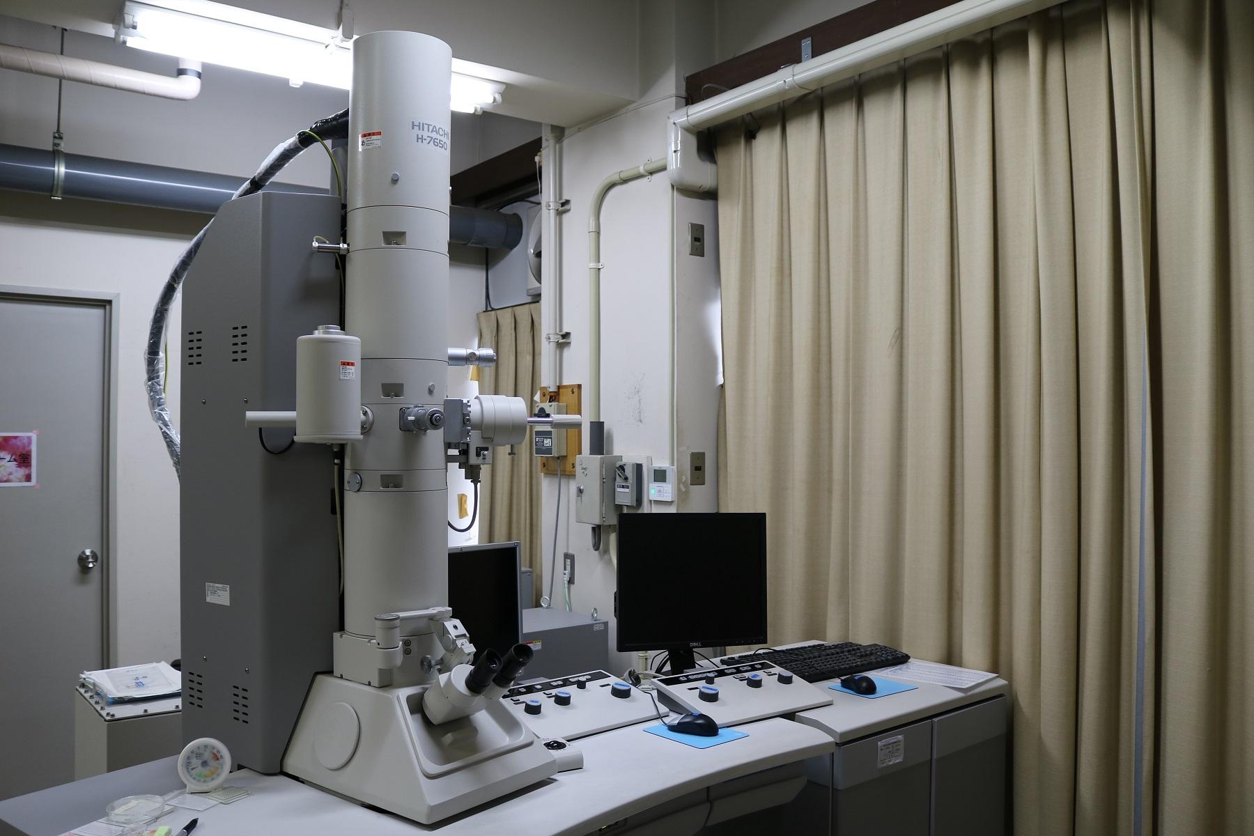 [088] 透過電子顕微鏡 画像