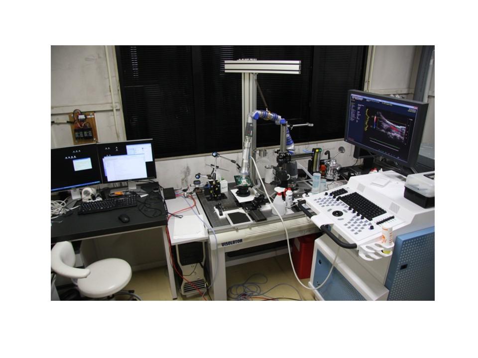 [305] 小動物用超音波計測装置 画像