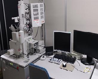 [331] 走査型電子顕微鏡 1式  〔リンク〕 画像